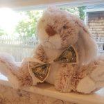 stuffed animal bunny on a windowsill with a dollar bill as a bow tie